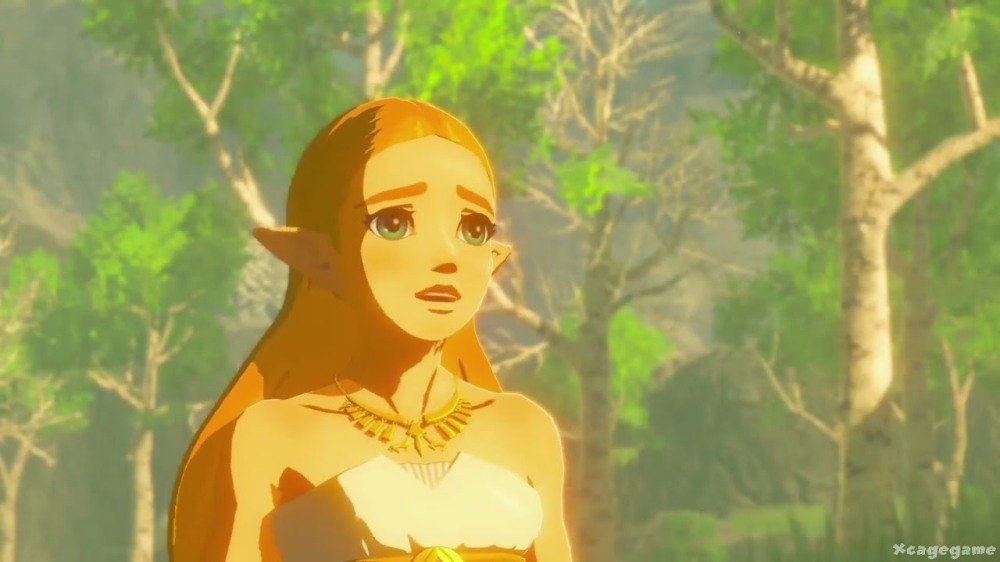 Breath of the Wild Zelda.jpg